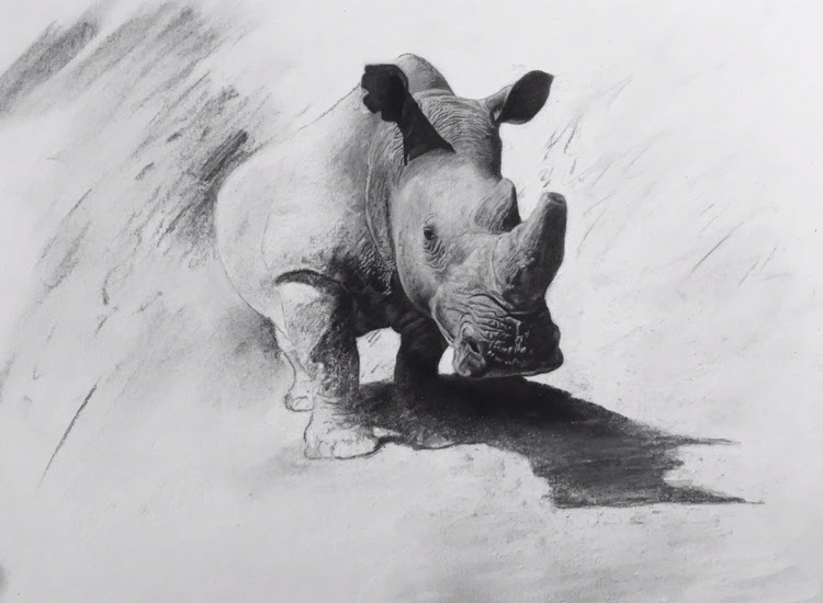 Darren Baker Rhino Original Artwork